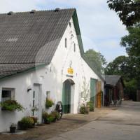 Eschenhof - Horse riding holidays - Cuxhaven