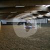 Reitstall Markushof - Horse stable - Bornheim