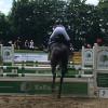 Kreisturnier des Pferdesportverbandes Viersen