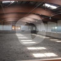 Reit- und Voltigierschule Hannover-Bemerode - Riding school - Hanover