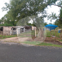 Ramsey's Rescued & Retired - Horse farm