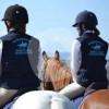 Kyrewood Equestrian Centre - Horse ranch - Palmerston North