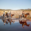 African Horse Company - Horse riding - Gansbaai