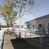 Wallishof Papitz - Horse ranch - Kolkwitz