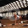 Gut Heiderhof - Horse stable - Königswinter