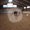 Gut Weldertal - Horse ranch - Fuchstal