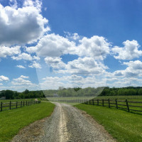 Cloverfield Equestrian Center LLC - Stalla - township de Readington