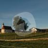 Hof Thann Rummelhof/Moarhof - Horse stable - Holzkirchen
