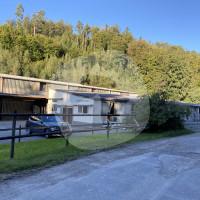 Reitsport-Genossenschaft Eldorado - 骑术学校 - 克尼茨