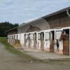 Reitanlage Grünweg - Horse stable - Seebruck