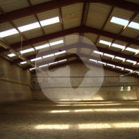 Wonder Stables - Horse stable - Bastogne