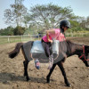 Skill Center Chiang Mai - Equestrian Education Center