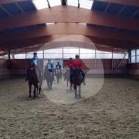 Reiterhof am Brombeerweg - Horse stable - Bornheim