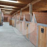 Reitanlage Eichenhof - Cavalo estável - Krebeck