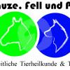 Schnauze , Fell und Pfoten - Horse therapy - Arnsberg
