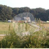 Deierepensioun Lassie Sàrl - Horse stable - Hesperange