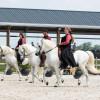 Horseman Days Peelbergen 2019