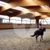 Reitsportzentrum Gehlenhof - Pferdestall - Tönisvorst