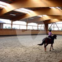 Reitsportzentrum Gehlenhof - Cavalo estável - Tönisvorst