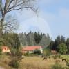 Islandpferdehof Machelberg - Horse stable - Weil