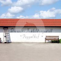 Dressur- und Ausbildungsstall Pappelhof