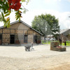Gut Degenhof - Riding school - Grevenbroich