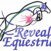 Reveal Equestrian - Equestrian Center - San Juan Capistrano