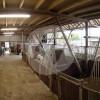 Grenzhof - Horse stable - Dormagen