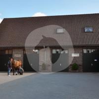 Tierärztliche Klinik für Pferde Meerbusch - Equine clinic - Meerbusch