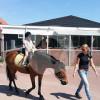 Manege De Eendracht - Horse holidays - Vrouwenpolder