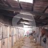 Reitstall Zollerhof - Scuola di equitazione - Korschenbroich